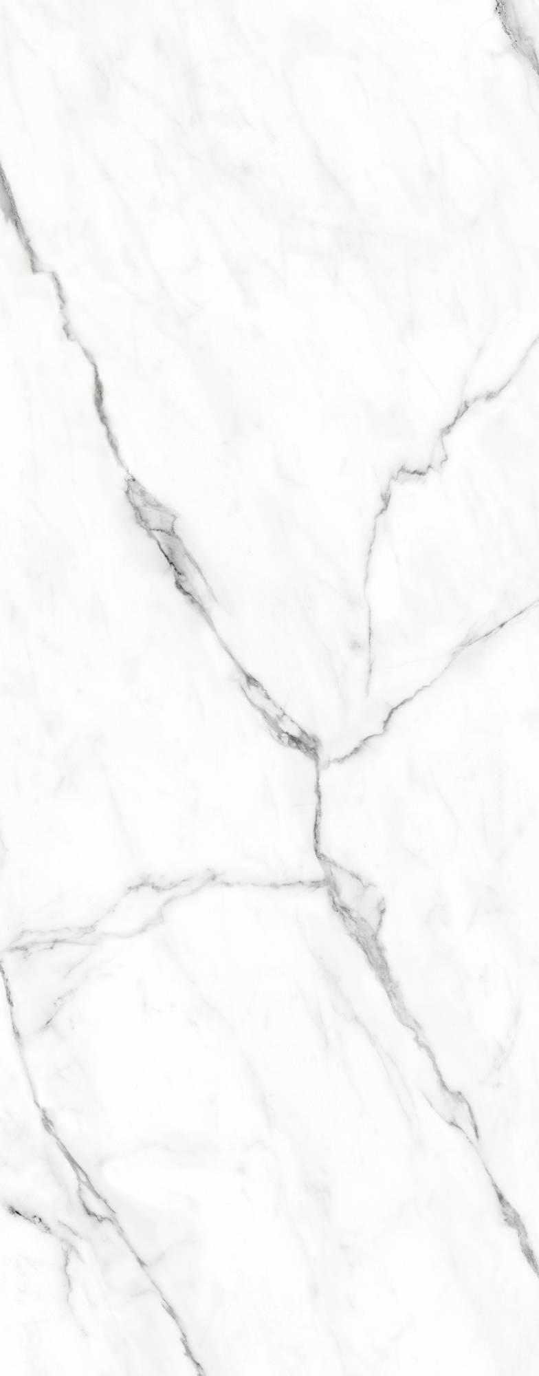 Duschprofi RenoDeco Designpaneel 100x255 cm Natuursteen Marmer Carrara Wit
