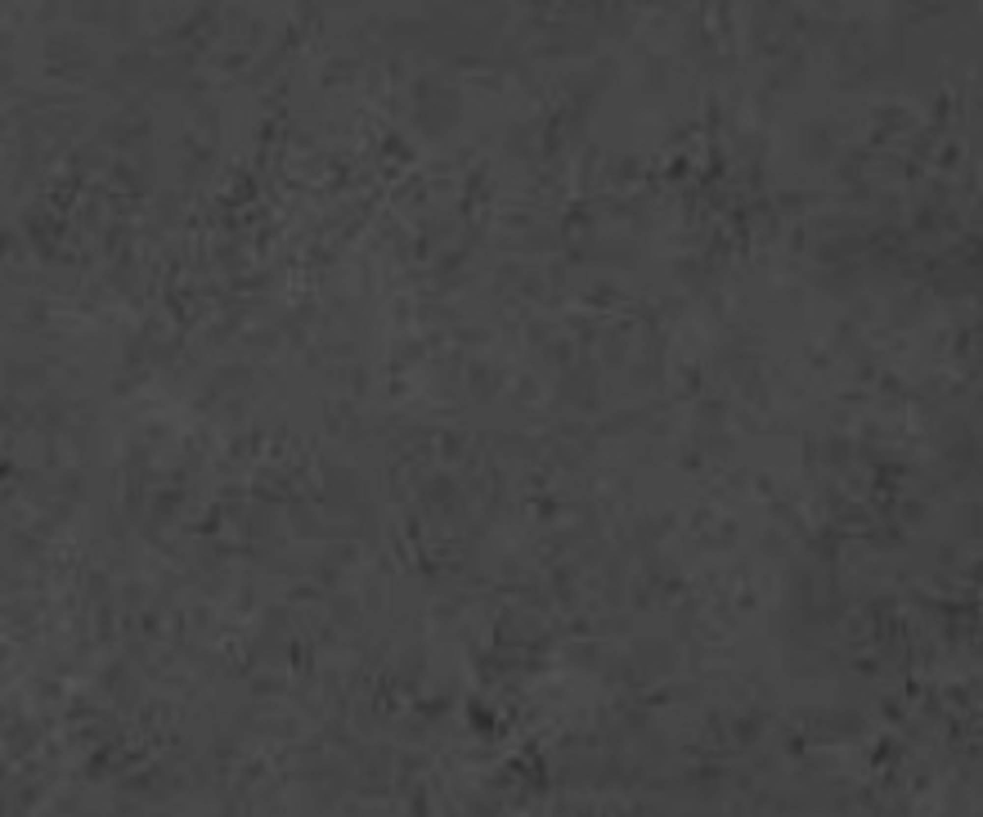 Duschprofi Renodeco paneel 100x255 cm natuursteen-grafietgrijs