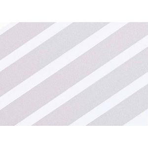 Sealskin Antislip stickers Transparant